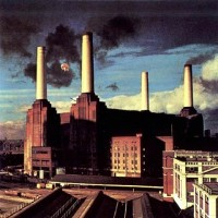 1977 - Animals