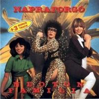 1979 - Napraforgo
